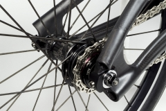 Custom handbuilt carbon dropouts, Recon titanium cog and custom Tune hub