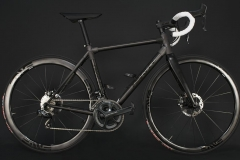 Parlee_Reflective_Disc_Parent